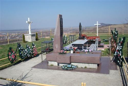 Prachtig uitzicht op Beregovo