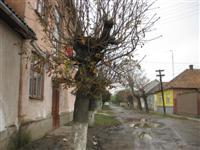 'Straat' in Beregovo